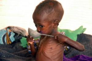 abendblatt de hunger