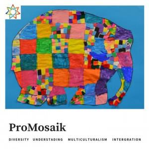 promosaik img38