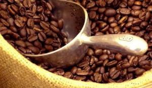 coffee cameroon promosaik